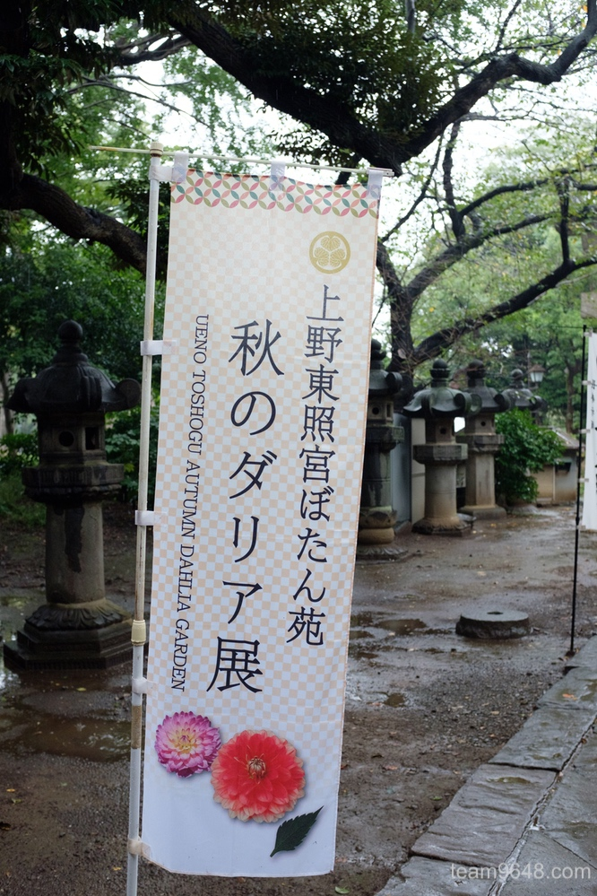 X100F 上野東照宮 ダリア展