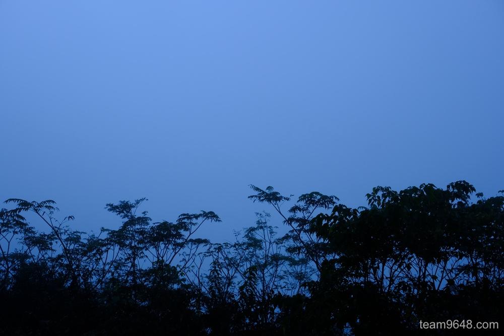 鹿野山 霧