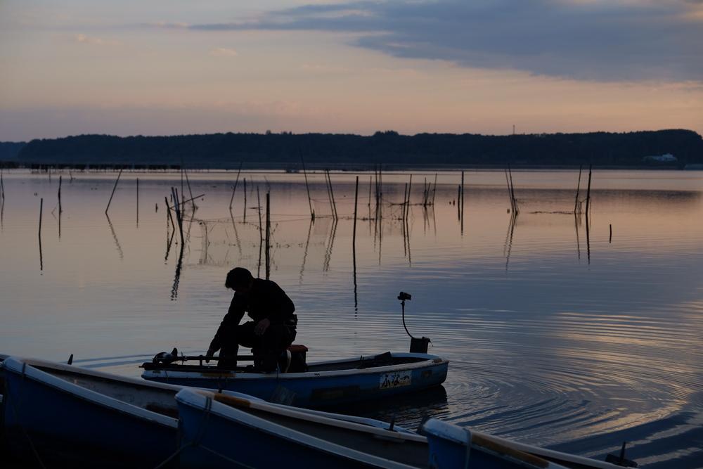 佐倉 印旛沼 日の出 釣り人