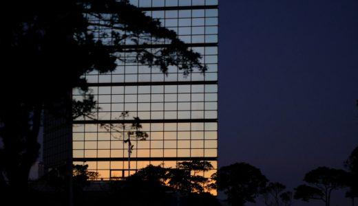 大晦日の朝、各地のみんなと一緒に写真を撮った。 #同時多発早朝フォトさんぽ