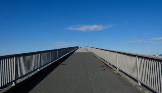 12月の南房総ドライブ。木更津の海や鋸南町の水仙を眺めてきた。(その1 - 中の島公園)