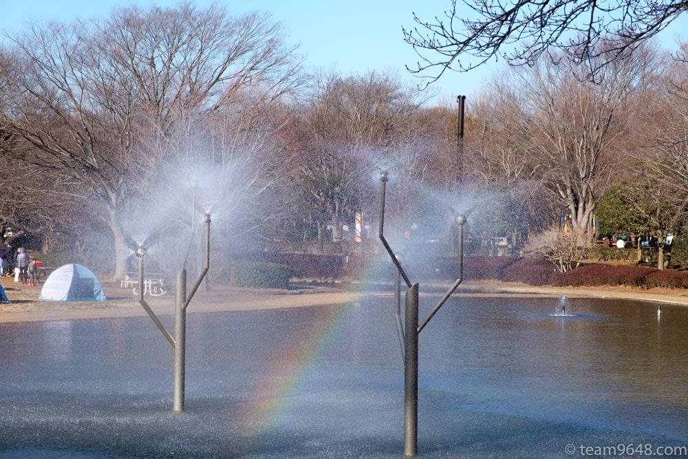 アンデルセン公園 水遊び にじの池