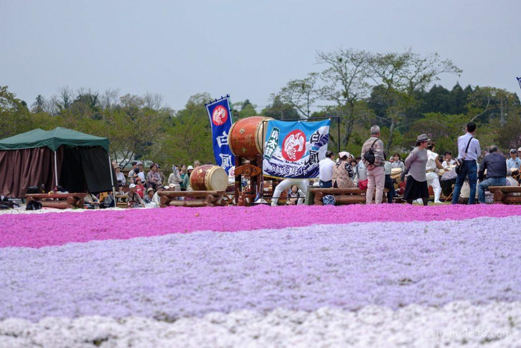 富田さとにわ耕園 芝桜 ネモフィラ