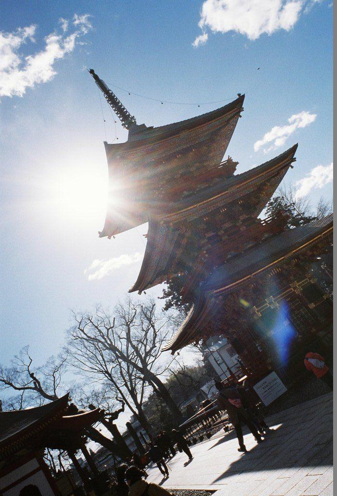 ナチュラクラシカ Venus800 作例 成田山新勝寺