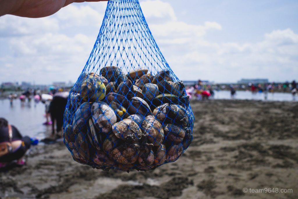 ふなばし三番瀬海浜公園 潮干狩り 1kg