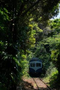 銚子電鉄 本銚子 緑のトンネル
