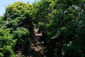 銚子電鉄 本銚子 緑のトンネル 俯瞰