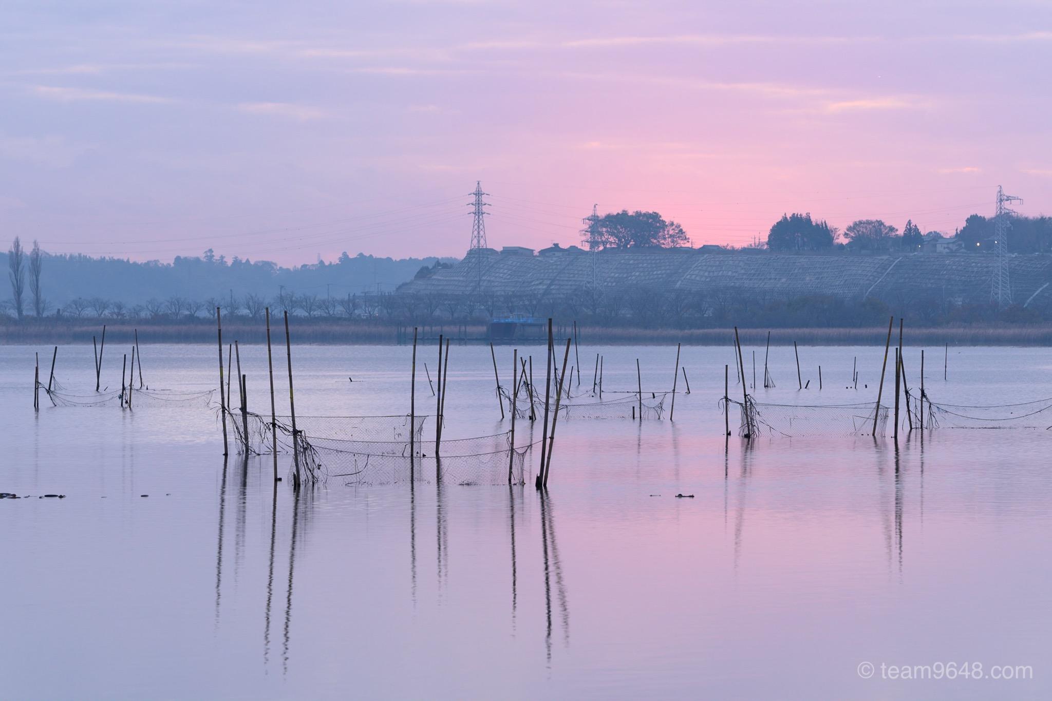 印旛沼 朝焼け