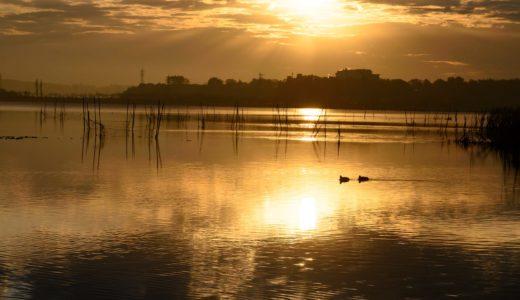 写真を撮るようになって、身近な景色が輝きだした。#カメクラの沼カレ2019